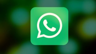 whatsapp guide for android