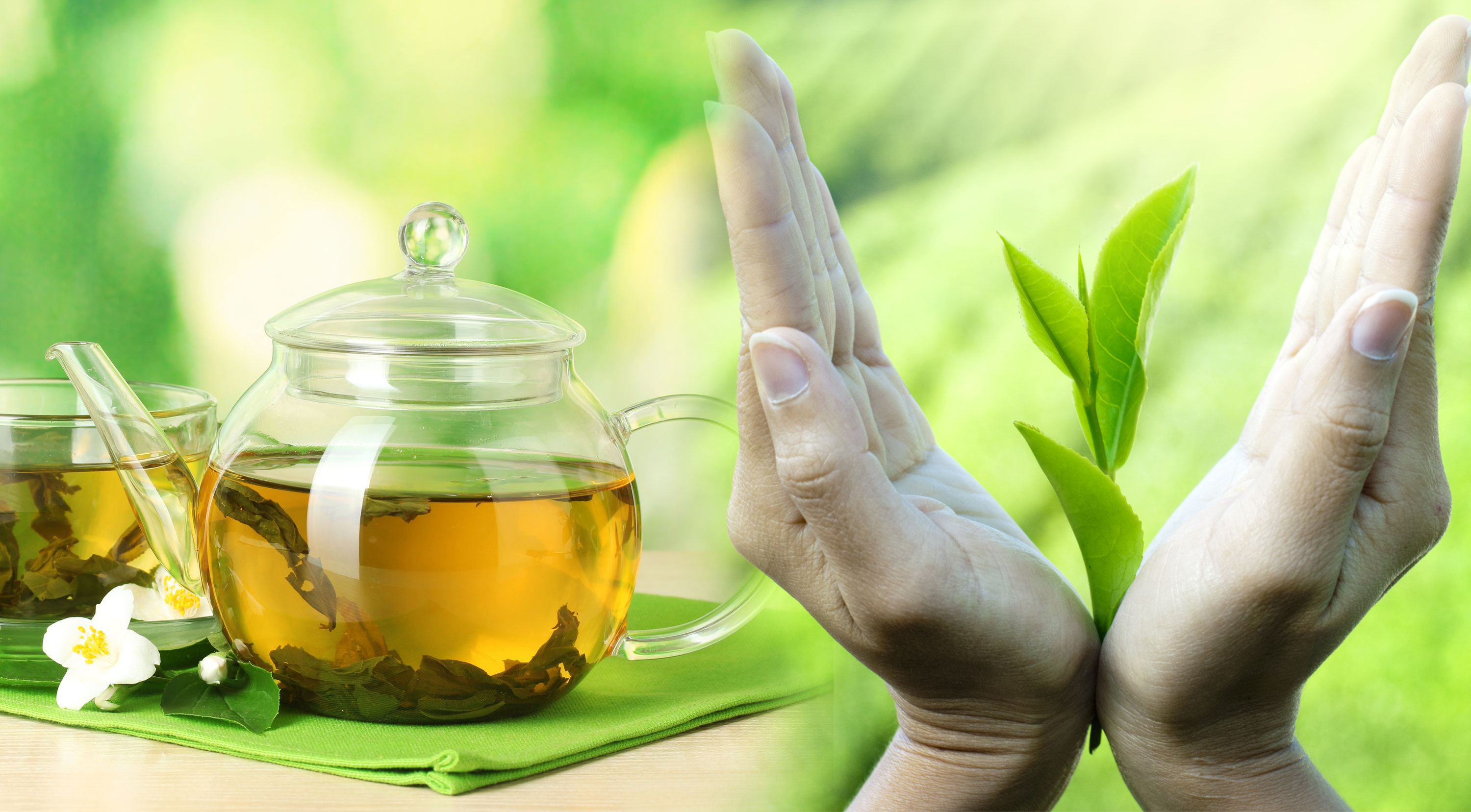6 Health Benefits of Green Tea to Live Long - Health Tips