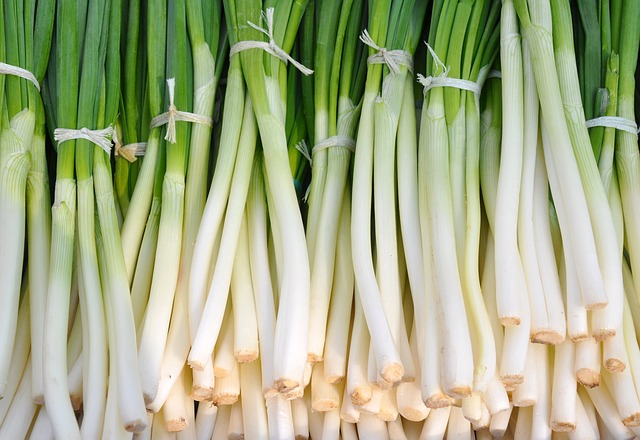 Green Onions for Cancer