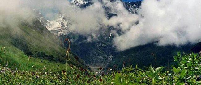 Valley of Flowers, Badrinath