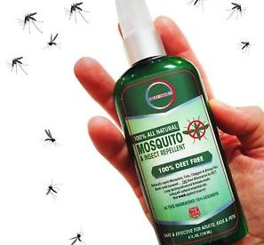 Image result for travel Insect repellent