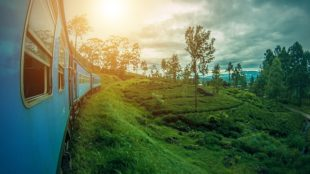 Sri Lanka in Your budget