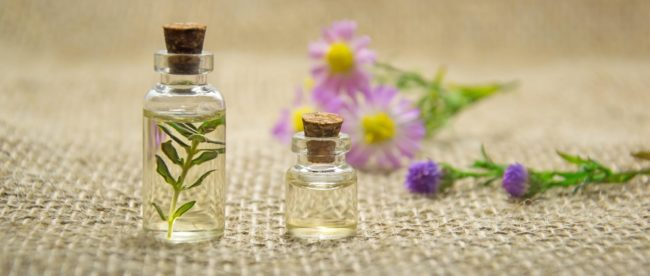 CBD Tinctures vs CBD Oils