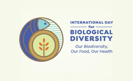 International Biodiversity Day